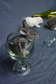 A toast to Easter by Alana  Schmitt