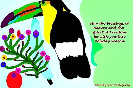 a Toucan Christmas by Dawna Raven Sky