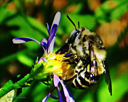 A Touch Of Nectar by Debi K Baughman