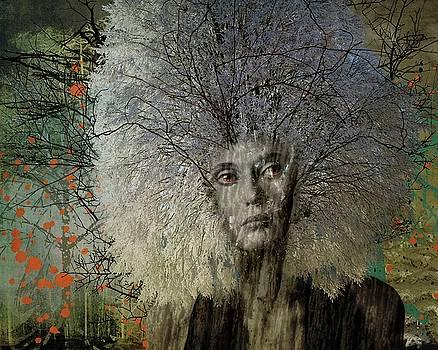 A Tree In Winter by Terry Fleckney