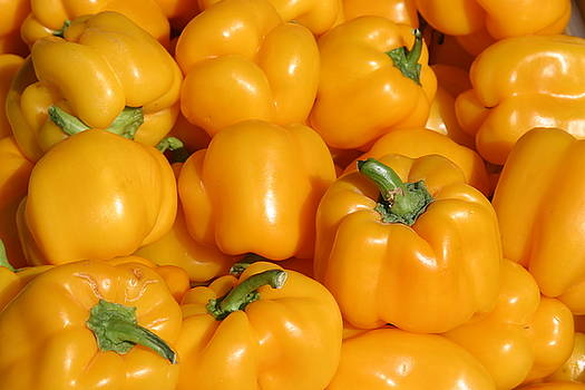 Michael Ledray - A trip through the farmers market featuring Yellow Bell Peppers