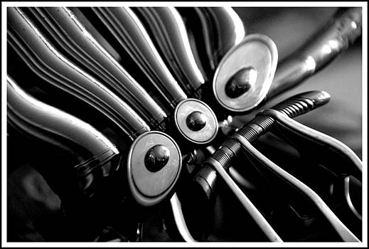 A Twisted French Horn 2 by Paul  Simpson