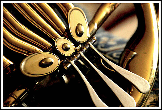 A Twisted French Horn 4 by Paul  Simpson