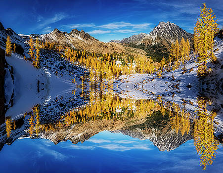 Pelo Blanco Photo - A Valley of Larches Reflection