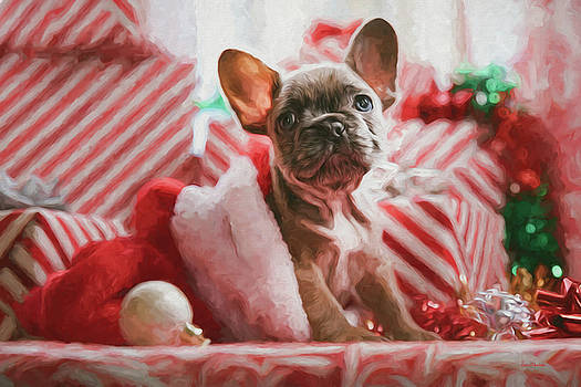 A Very Frenchie Christmas - Painting by Ericamaxine Price