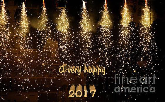 Patricia Hofmeester - A very happy 2017