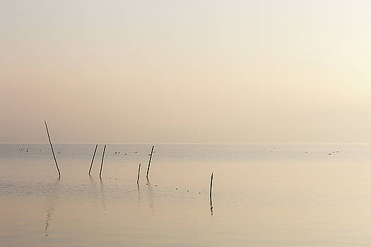 A very minimalistic view of a lake at dawn, with soft light and  by Massimo Discepoli