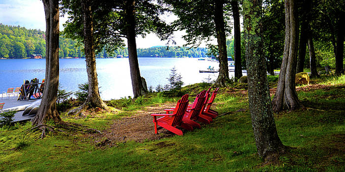 A View of Big Moose Lake by David Patterson