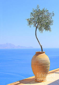 a view of Greece by Susan Wall