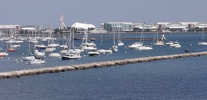 A View of Navy Pier by Anna Villarreal Garbis