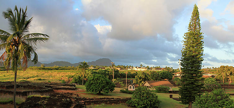 A View of Prince Kuhio Park by Bonnie Follett