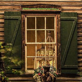 Paula Porterfield-Izzo - A Charming View Through a Rustic Window