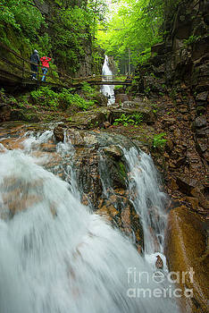 A Walk along the Flume by Alana Ranney