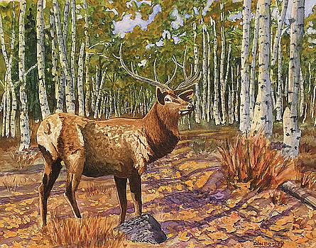A Walk in the Aspens by Don Bosley