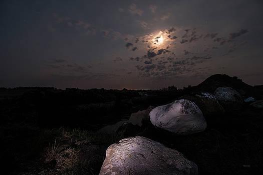 A Walk In The Moonlight by Melanie Janzen