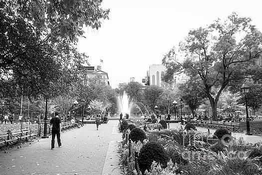 A Walk in the Park by Ana V Ramirez