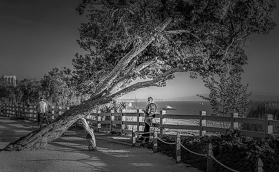 A Walk In The Park B and W by Gene Parks