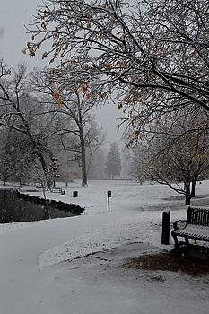 A Walk in the Park in Winter by Sue Houston