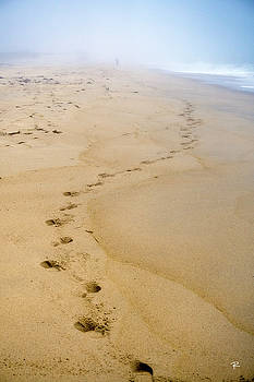 A Walk on the Beach by Tom Romeo