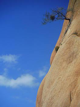 A Whisper Of Perseverance by John Smolinski