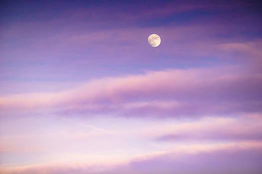 Ellie Teramoto - A White Moon in Twilight