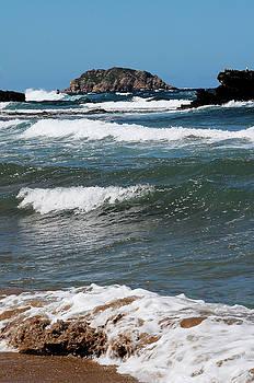 Pedro Cardona Llambias - A windy day in the beach