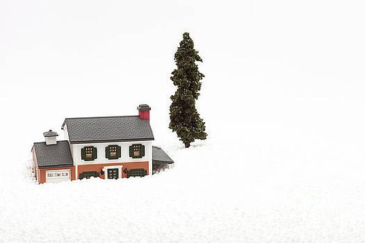 A Winter Scene by Diane Macdonald