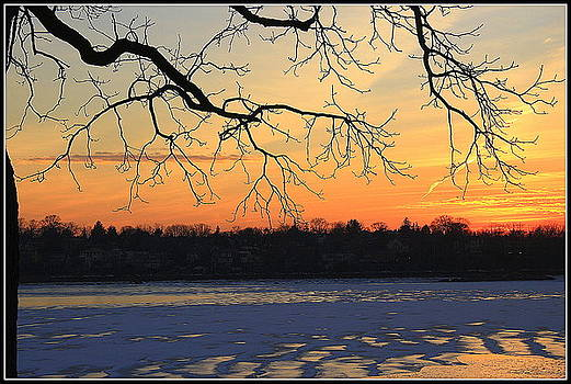 A Winter Sunset - Douglaston on the Bay by Dora Sofia Caputo Photographic Design and Fine Art