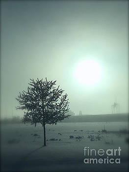 A Winter tree in the fog by Wonju Hulse