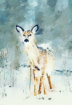 A Winters Tail by Alan Thompson