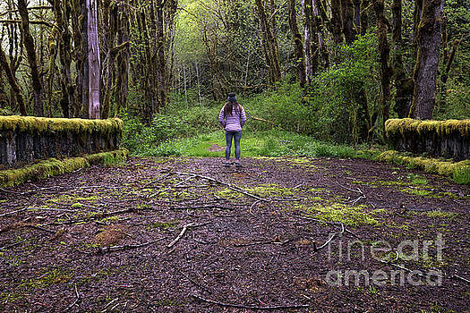 A Woman on a Moss Covered Bridge in Olympic National Park by Brandon Alms