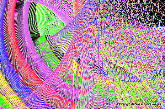 A Woven of Rainbow by JCYoung MacroXscape