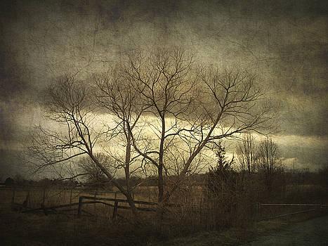 A Wyeth Landscape by Cynthia Lassiter