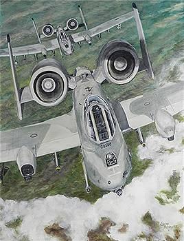A10 Warthog by Elaine Balsley