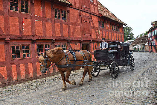 Aarhus Horse and Buggy by Catherine Sherman