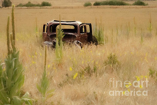 Abandoned 1930 Dodge by Mellissa Ray
