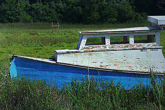 Abandoned and Blue by Sheryl Bergman