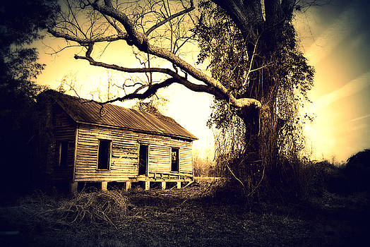 Abandoned and Forgotten by Rheann Earnest