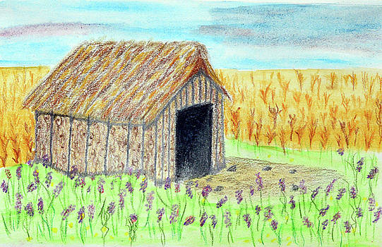 Abandoned Barn in Field of Fireweed by Lisa Von Biela