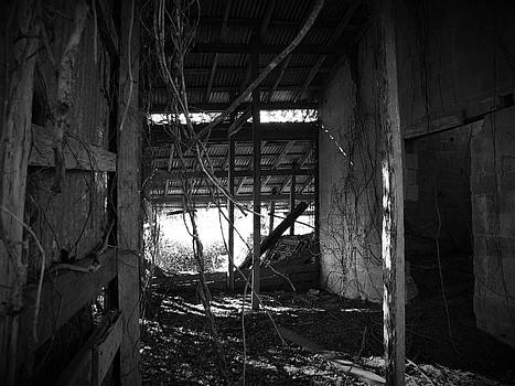 Abandoned Barn by Phil Penne