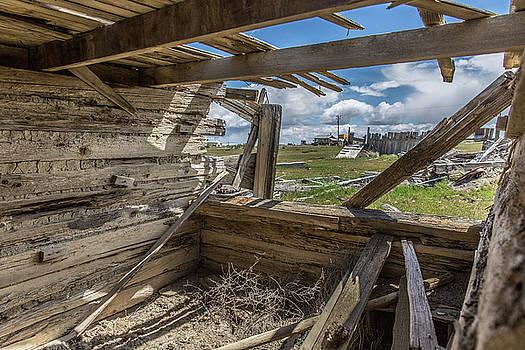 Abandoned Building in Cisco, Utah by Janice Bennett