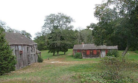 Tammy Bullard - Abandoned Buildings