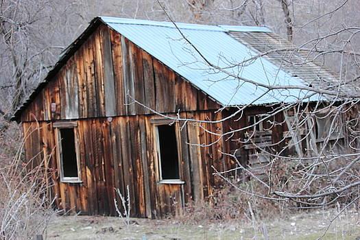 Abandoned Cabin 1 by Linda Meyer