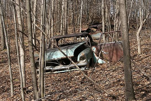 Abandoned Car 2 by Ajp