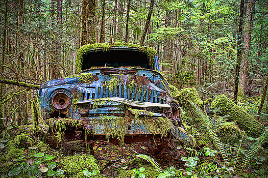Peggy Collins - Abandoned Car in the Forest