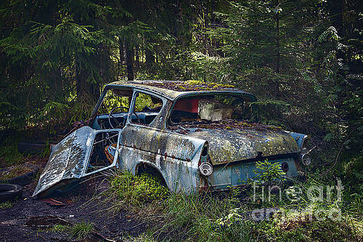 Abandoned car wreck by Sophie McAulay