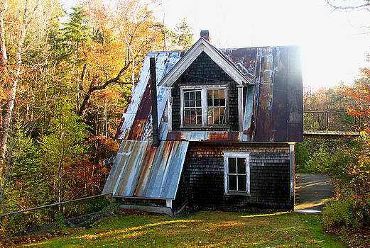 Tammy Bullard - Abandoned Cottage 2