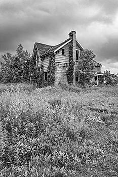 Steve Harrington - Abandoned Dreams bw