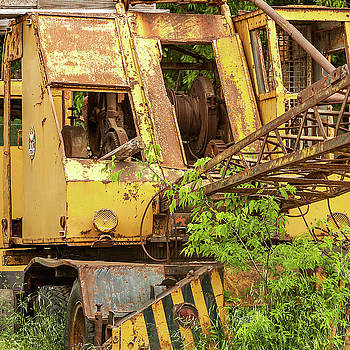 Abandoned Excavator by Art Block Collections