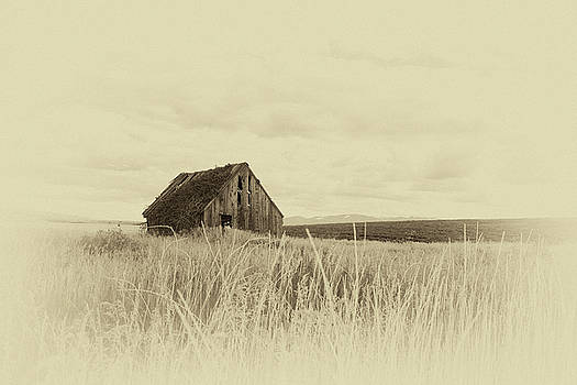 Idaho Barn by Gej Jones